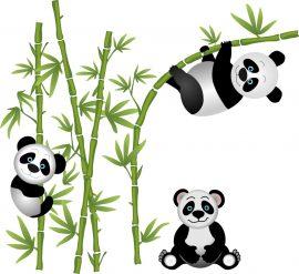 bambuszos, pandás falmatrica