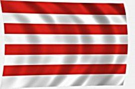 Árpád sávos zászló